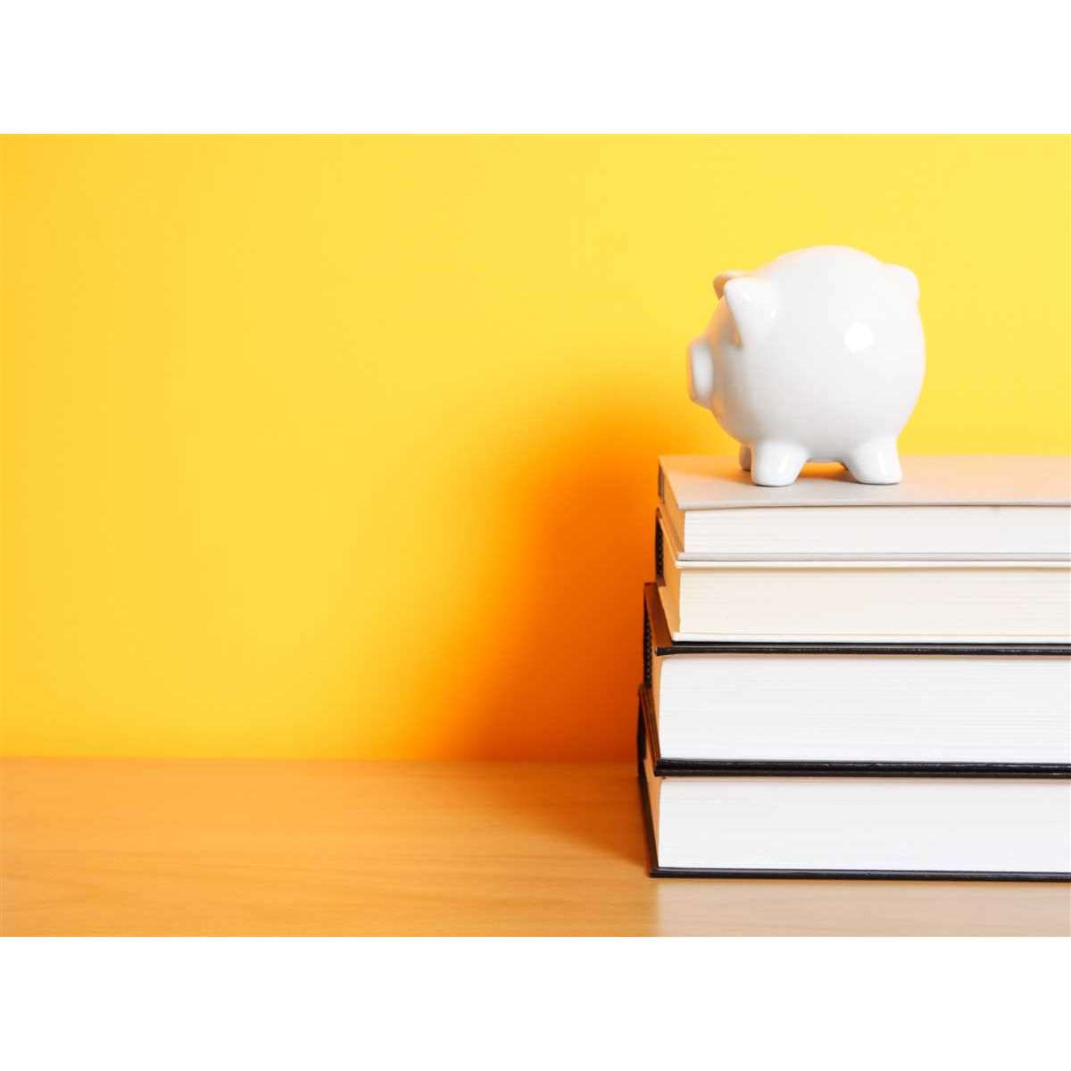 pagare gli studi universitari